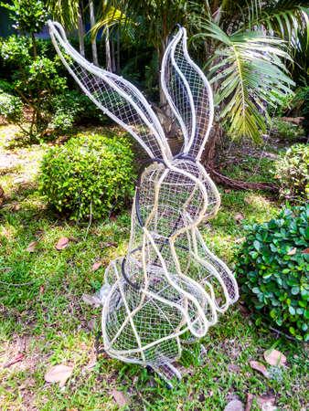 temperament: rabbit