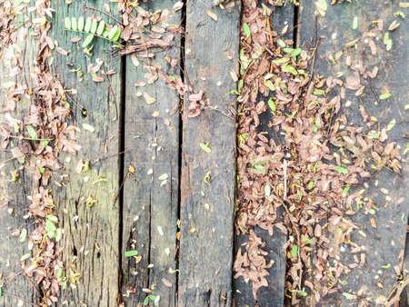 old wood floor: Old wood floor in the garden