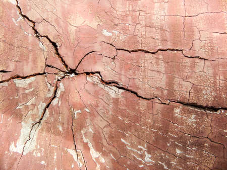 wood surface: Old wood is crack on surface