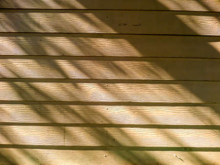 light complexion: Wooden and shadow of tree and sunlight
