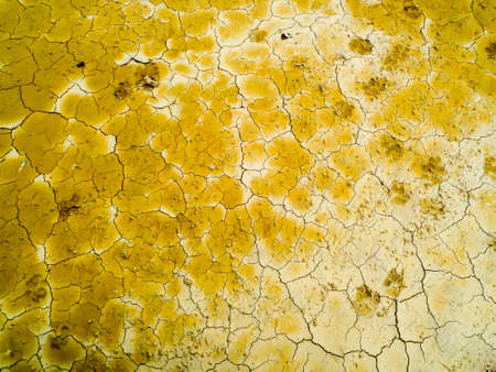foot paints on dry dirt at swamp in summer no survival cause high temperature Stock Photo
