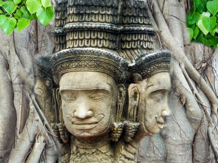 pipal: brahma head status religion art in the bodhi tree with backgroung