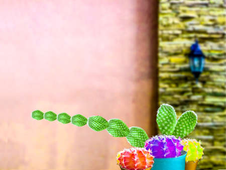 temperament: green cactus long hand and three cactus color ball friend and wall background Stock Photo