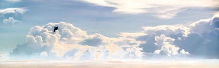flyaway: heap cloud sky panorama view and flying bird in summer