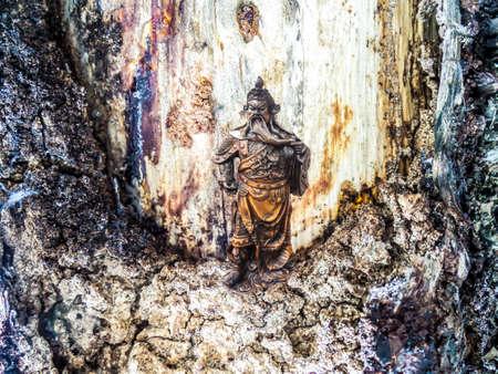 duramen: Dios guerrero emperador y el duramen tono de la tierra de la textura de la piel