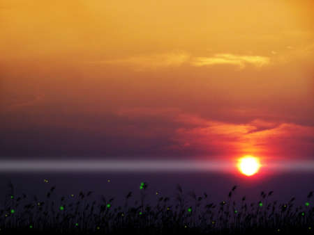 silhouette grass firefly in lake and blur sunrise sky background