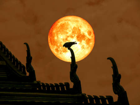 super full blood moon back of silhouette bird on temple roof, Elements of this image furnished by NASA