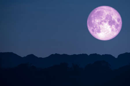 flower pink moon back on silhouette mountain on night sky