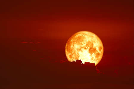 harvest blood moon back on silhouette red orange cloud and night sky Imagens