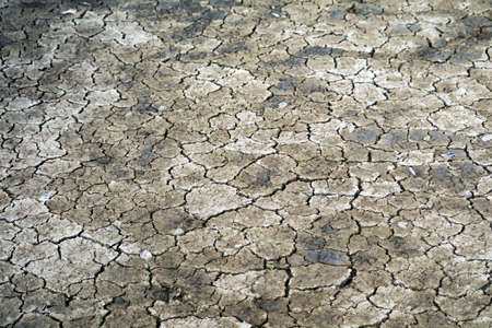 The soil is dry, the surface is cracked because it doesnt rain for a long time
