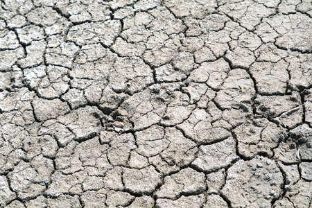 The soil is dry, the surface is cracked because sunburn on top dirt and rain doesn't for a long time 版權商用圖片