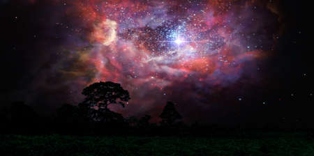 blur ancient stardust nebula back on night cloud sunset sky over silhouette forest
