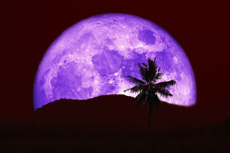 Super purple moon and silhouette coconut tree mountain in the night red sky