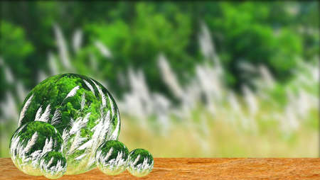 Reflection of white grass flowers green leaves swing by wind in field and meadow on old wood on many crystal balls glasses 版權商用圖片