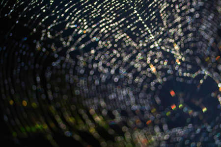 rainbow colorful blur and bokeh abstract and art of cobweb, dew drop and rain on web and dark background