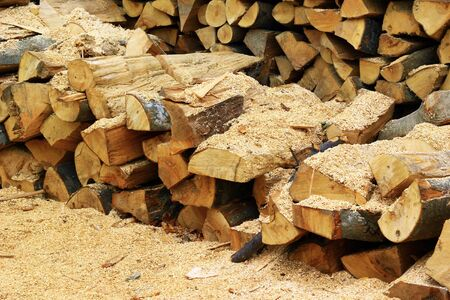 Chopped wood inside sawmill photo