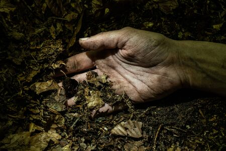 Dirty woman hand on forest floor lightened by flashlight. Kidnapping and crime concept.  Reklamní fotografie