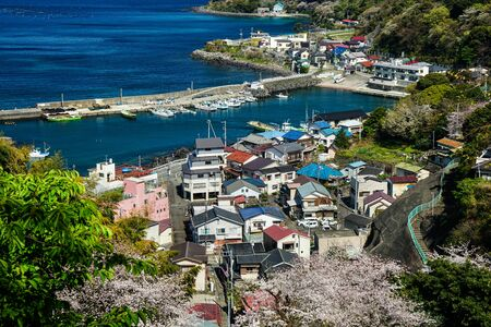 A small port town in Japan in the beginning of spring., surrounded by cherry blossom (sakura) trees. Reklamní fotografie