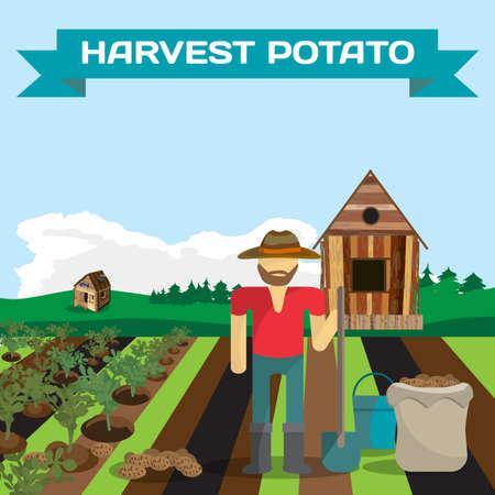 manual labor: Man harvesting potato in a field in the village. Manual labor, shovel, bucket, sack, bush potatoes, rural view. Cartoon flat vector illustration