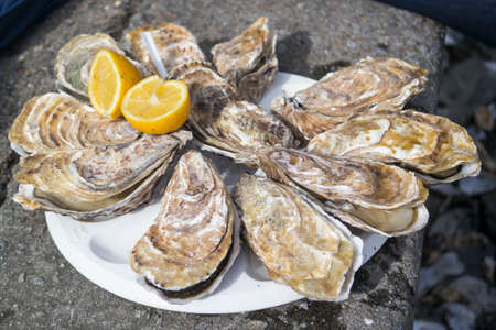 Oyster with lemon juice