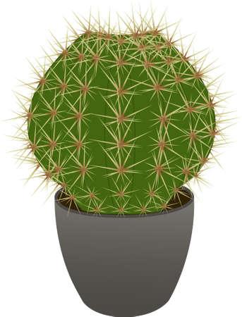 Cactus in a pot Ilustração
