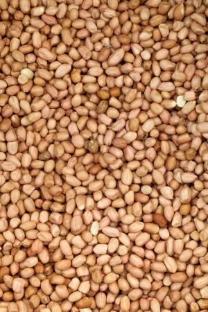 goober peas: close up many roast peanut