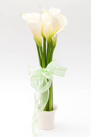 white calla lily in vase photo