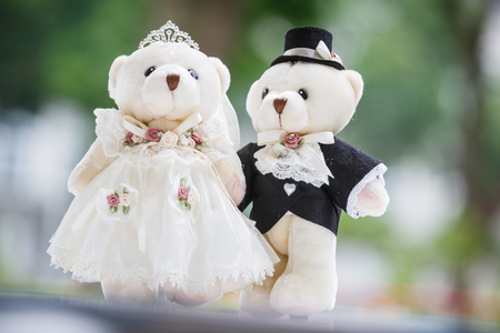 cute couple bears in the wedding style photo