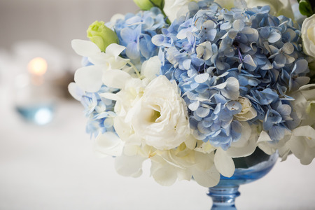 white and blue flower in blue vase