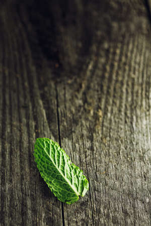 Green fresh mint leaf on the wooden table, selective focus Stock Photo