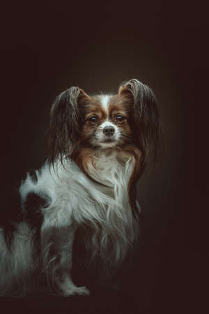 Adorable Papillon Dog. Studio shot. Moody dark lighting, dark background.