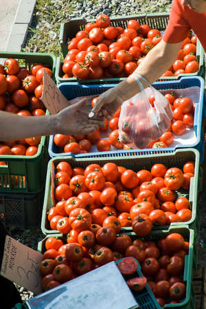 Two people standing at a stall in the market  One person pays the other for bought tomatoes  Publish three different versions of this picture if validations pass  Horizontal zoom, zoom Square, Vertical Full