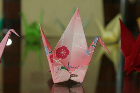Colorful paper birds folded with craft  Nice reflections