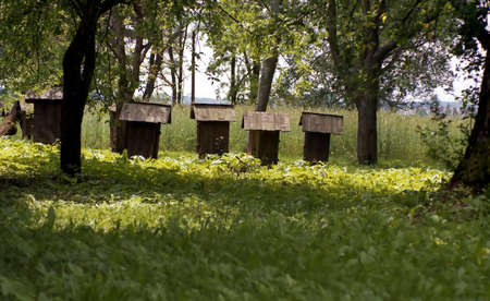 Ancient beehives landscape located somewhere in central euroope