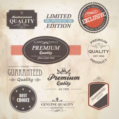Set of retro badge and labels Vector