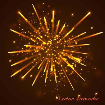 colourful fire: Beautiful  Fireworks Illustration