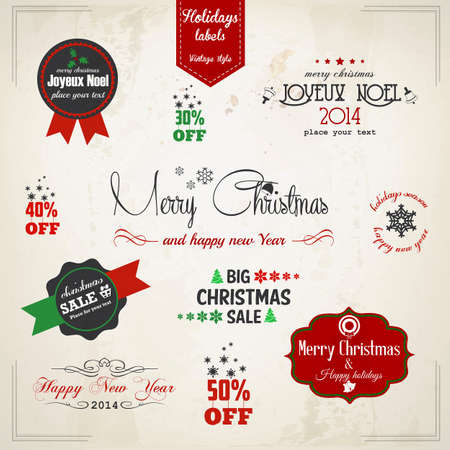 hollies: Christmas decoration collection  Vector