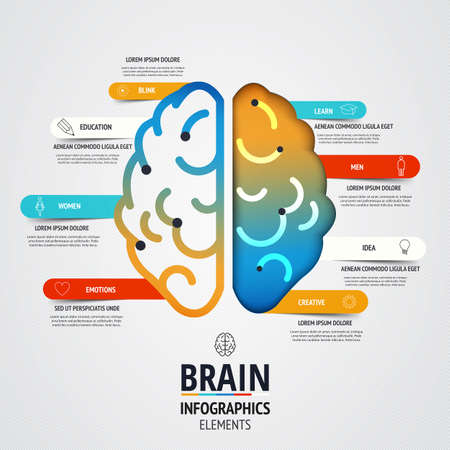 Creative brain infographics design. Inspiration concept modern design template workflow layout, diagram, step up options. Vector Vector