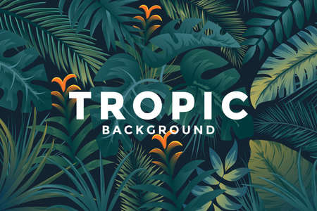 Tropical background with jungle plants. Trendy background with tropic leaves, can be used as Exotic wallpaper, Greeting card, poster, placard. Vector Illustration Stock fotó - 124765455