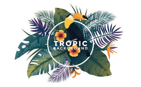 Tropical background with jungle plants. Frame with tropic leaves and Toucan bird, can be used as Exotic wallpaper, Greeting card, poster, placard. Vector Illustration Illusztráció