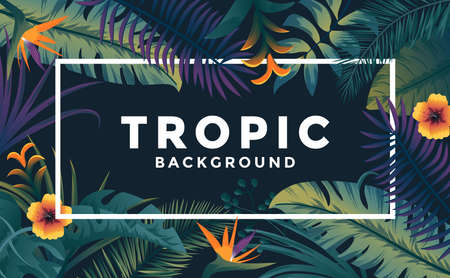 Tropical background with jungle plants. Frame with tropic leaves, can be used as Exotic wallpaper, Greeting card, poster, placard. Vector Illustration Stock fotó - 124765458