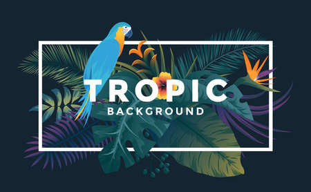 Tropical background with jungle plants. Frame with tropic bird and leaves, can be used as Exotic wallpaper, Greeting card, poster, placard. Vector Illustration Stock fotó - 124765459