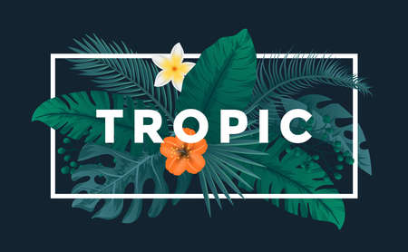 Tropical background with jungle plants. Frame with tropic leaves, can be used as Exotic wallpaper, Greeting card, poster, placard. Vector Illustration Illusztráció