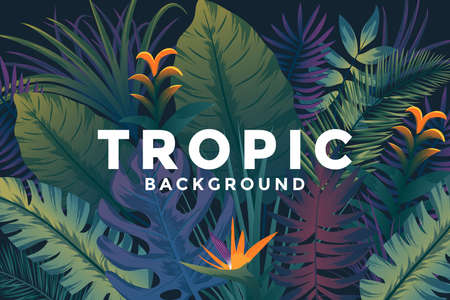 Tropical background with jungle plants. Trendy background with tropic leaves, can be used as Exotic wallpaper, Greeting card, poster, placard. Vector Illustration Stock fotó - 124765464