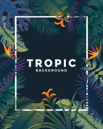 Tropical background with jungle plants. Frame with tropic leaves, can be used as Exotic wallpaper, Greeting card, poster, placard. Vector Illustration Stock fotó - 124765466