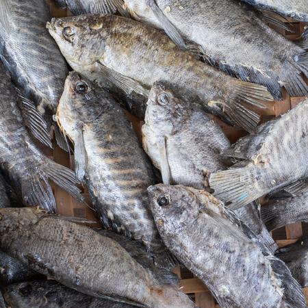 pectoralis: Dried Trichogaster pectoralis fish on threshing basket Stock Photo