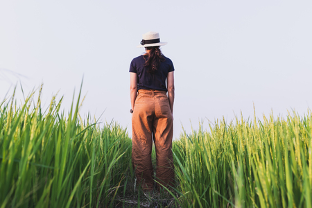 Women standing alone in rice fields and evening light