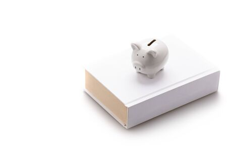 Piggy bank, white pig, put on a white book Isolated on white background and copy space, saving and investment concept