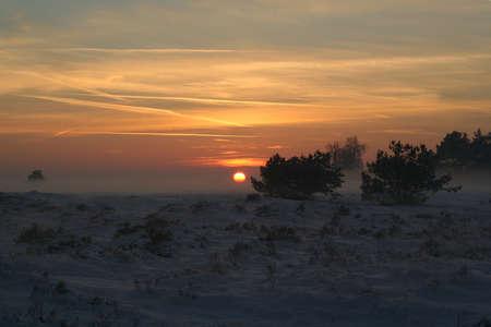 veluwe: Sunset on the Hoge Veluwe