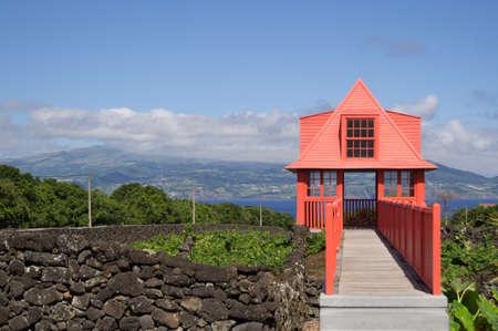 madalena: View post over the vineyard in Madelena Pico Stock Photo